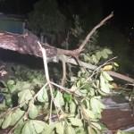 Fuerte tormenta causa estragos en Puerto Boyacá